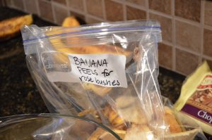 Reuse Banana Peels as Fertilizer for Rose Bushes